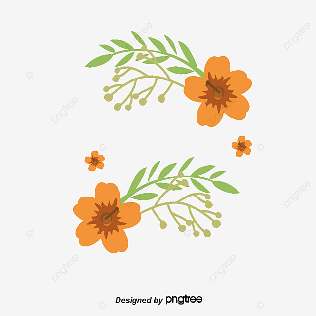 Titulo Caja Acuarela Flor Naranja Vector Png Acuarela De Plantas