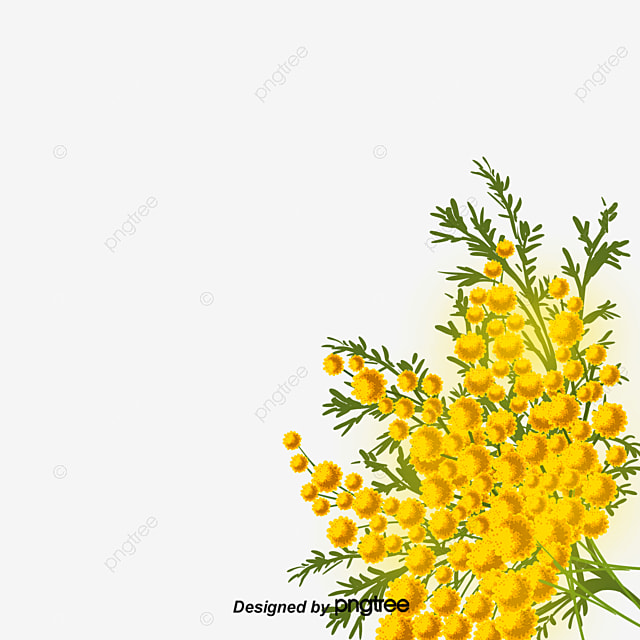 Yellow Flower Png Images Vectors And Psd Files Free Download On
