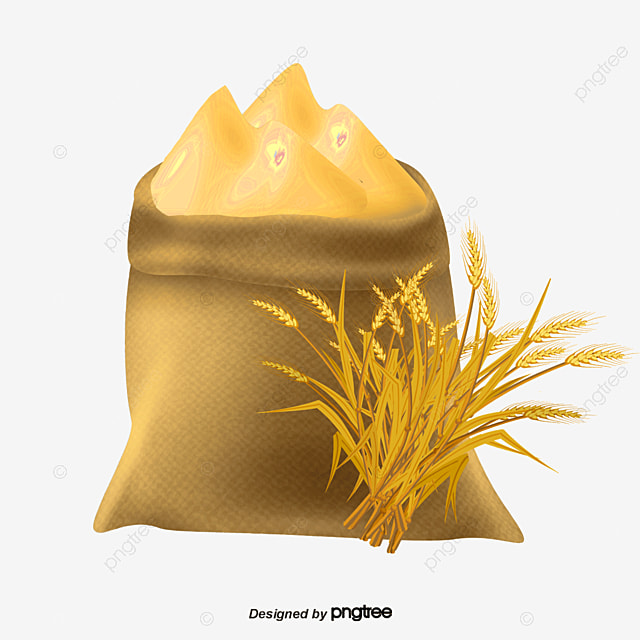 Wheat Flour, Vector Png, Pure Natural, Golden Wheat PNG ...
