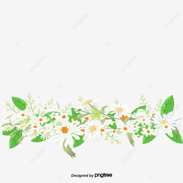 Flores Blancas Flor Textura De Frontera Flores Blancas Archivo Png Y