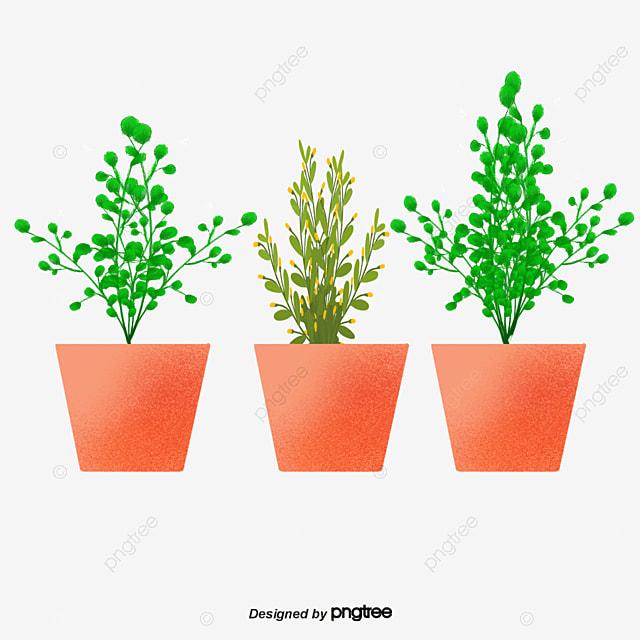 Vector Cartoon Green Plants Png, Vector Green Plant