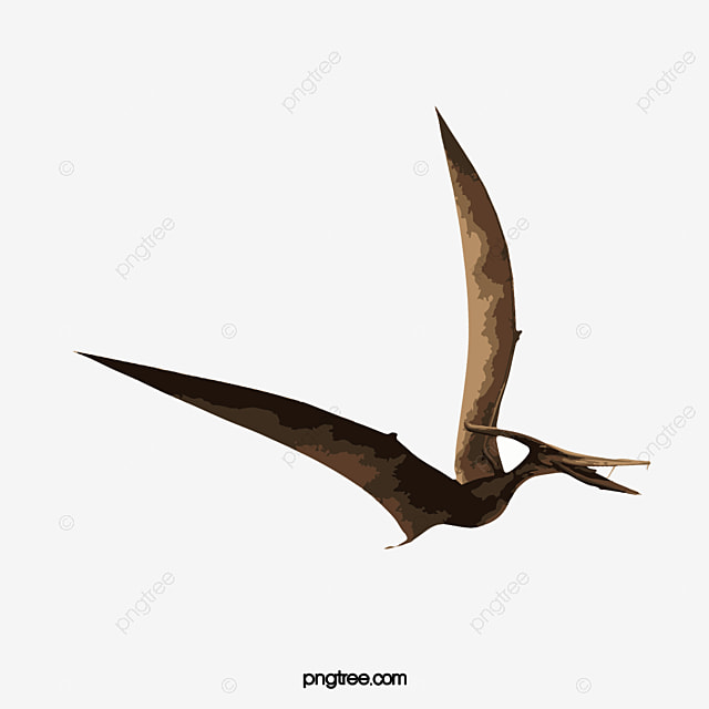 Flying pterosaurs 3d dinosaurs dinosaur png image and - Dinosaur volant ...