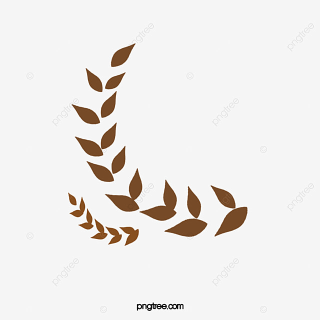 سنبلة القمح القمح علم النبات الحبوب Png وملف Psd للتحميل مجانا
