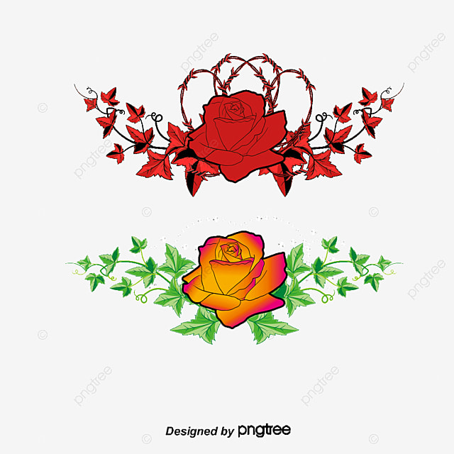 Golden Rose Rose Flower Flower Png And Vector For Free