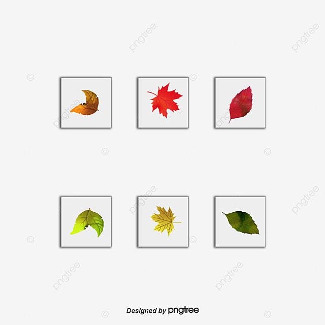 autumn red cartoon leaves vector pattern gules the autumn harvest rh pngtree com cartoon leaves wind cartoon leaves texture