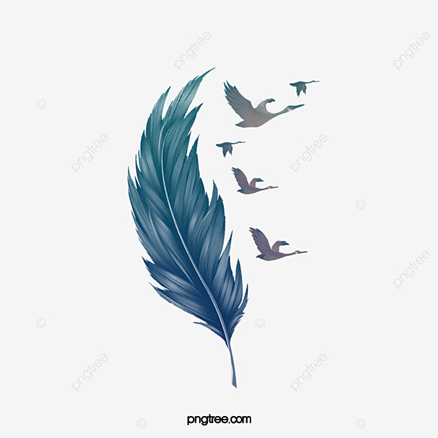 Blue feather, Hand Painted Feather, Floating Feathers, Feather Illustration PNG Image