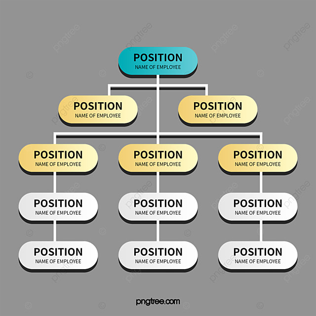 organizational chart organization structure chart data png and