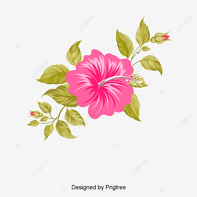 hawaii flores pintadas a mano hawaii tropic mano png y