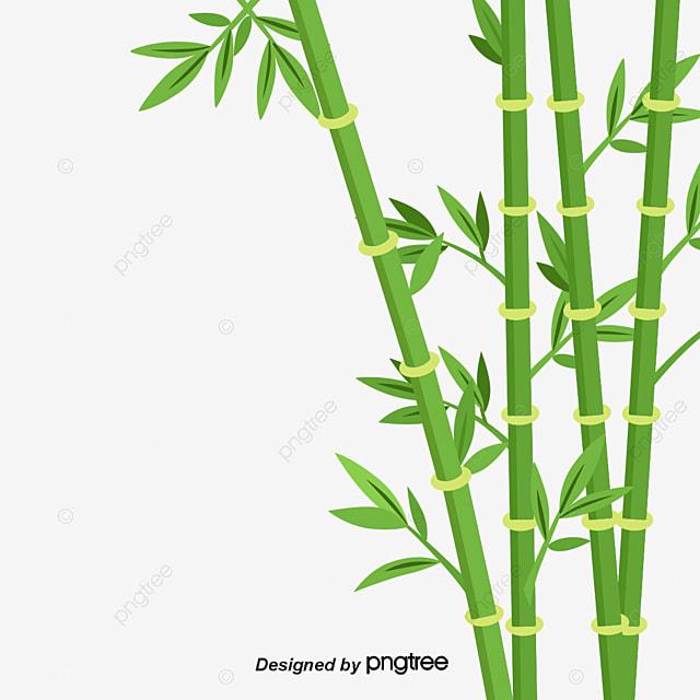 Фотообои бамбук  купить в интернетмагазине Росфотообои