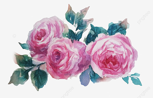 watercolor flowers watercolor clipart pink flower png image and