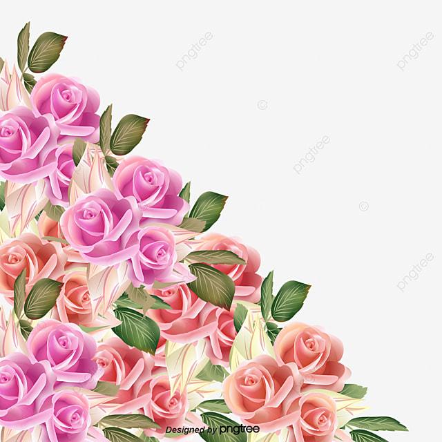 De Belles Fleurs De Toutes Les Couleurs, De Belles Fleurs, Des