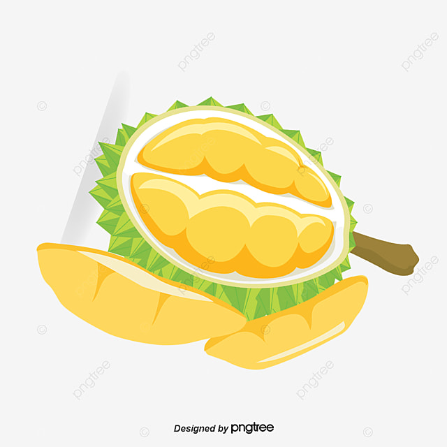 ouvrir le durian un durian ouvrir le durian d u00e9corer png et