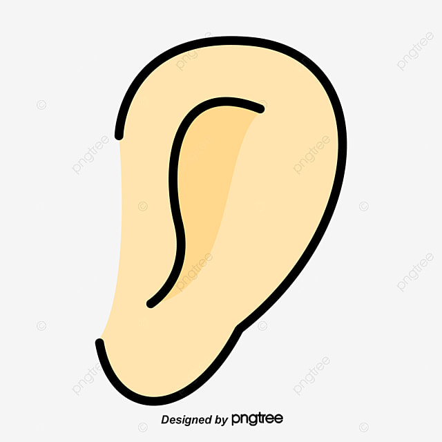 cartoon oreille lobe cartoon la m u00e9decine biologique png et