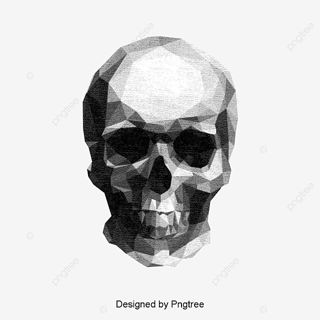 dibujo de calavera sketch esqueleto humano cr u00e1neo archivo