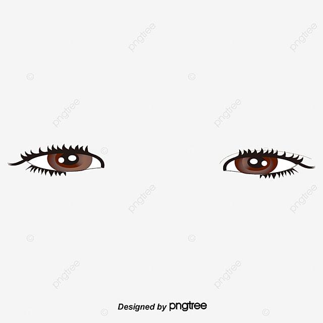 de beaux grands yeux vector diagramme les deux yeux de