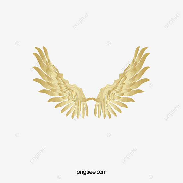 Wing Gold >> Gold Wings Wing Feather Gold Clipart Png Image And Clipart For