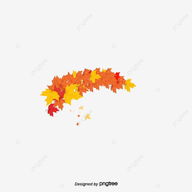 les feuilles d automne feuille d  u00e9rable l automne l automne maple png et vecteur pour