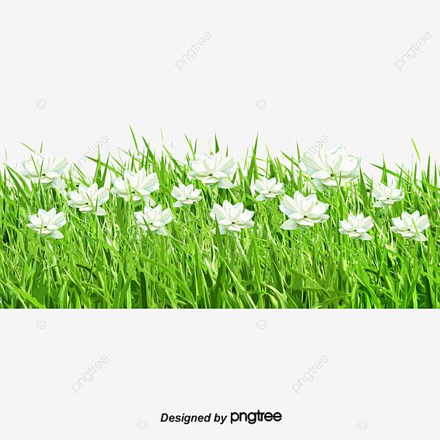 Spring Flowers Cartoon Grass Spring Vector Cartoon Vector Grass