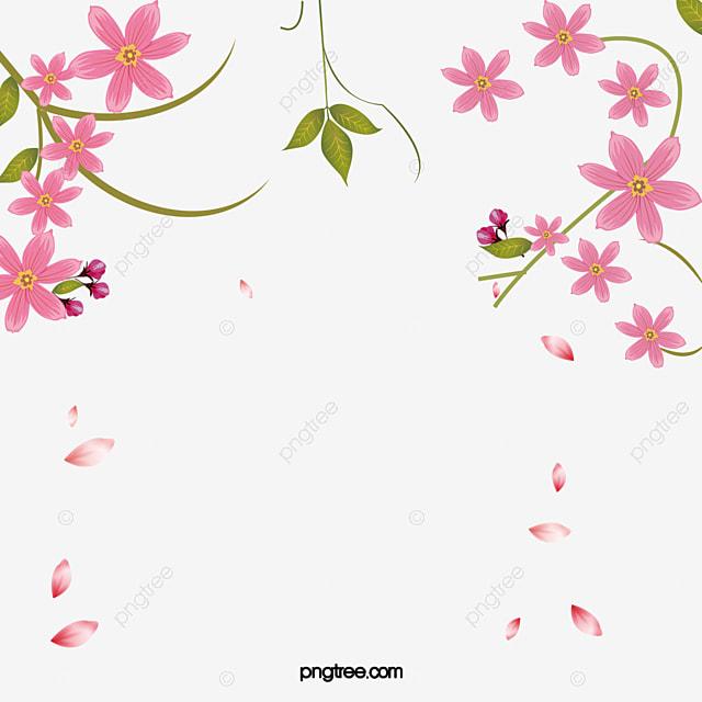 Floral Con Bordes Decorativos Flores Decoracion Frame
