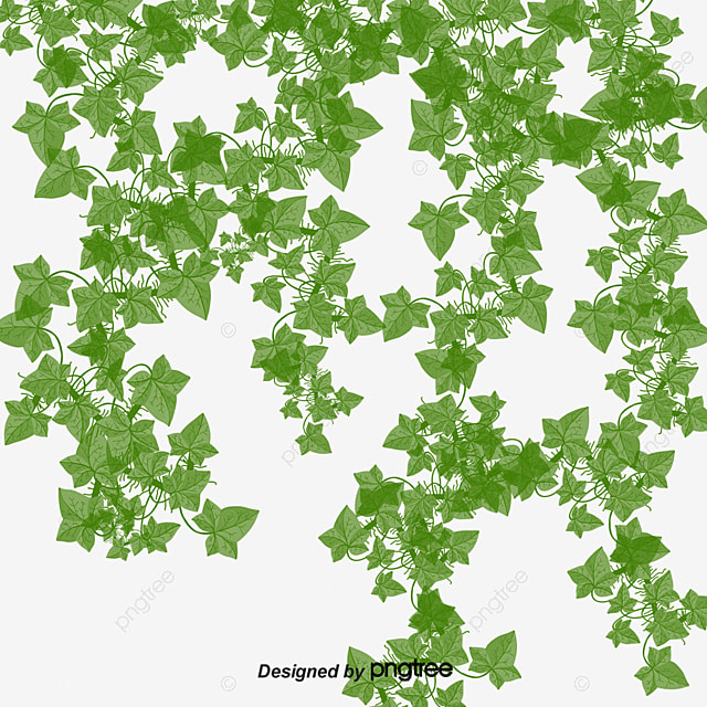 Creeper Grass Png And Psd File For Free Download