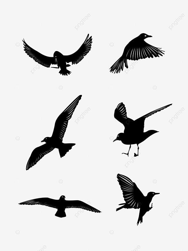 46 Free Vector Flying Birds Silhouettes, Flying, Flying Bird