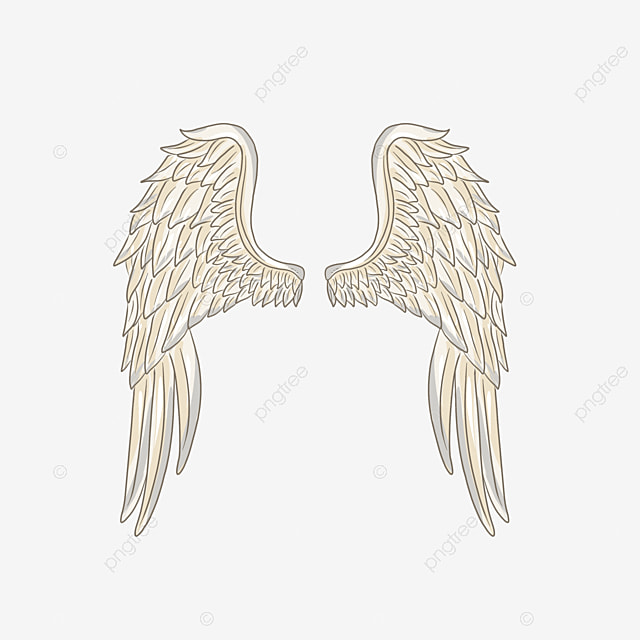 Angel Wings Picture Angel Wings Vector Material Angel Wings Template Download Angel Wings Png Transparent Clipart Image And Psd File For Free Download