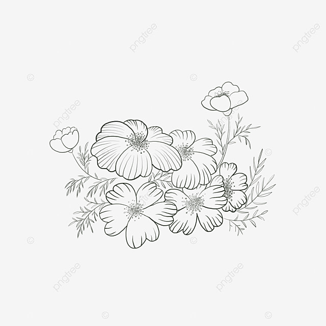 73+ Gambar Bunga Mawar Vektor Cdr Terlihat Keren