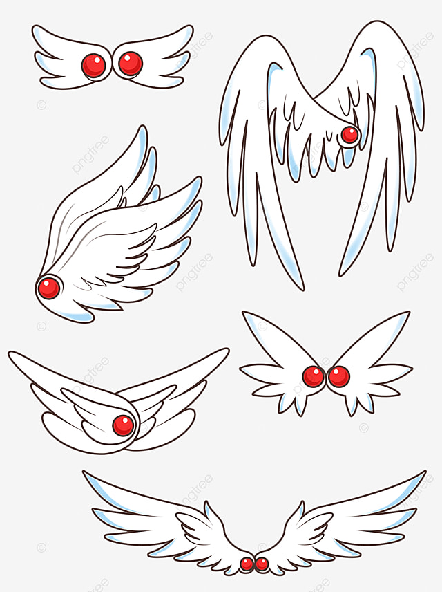 Wings cute. Original cartoon white png