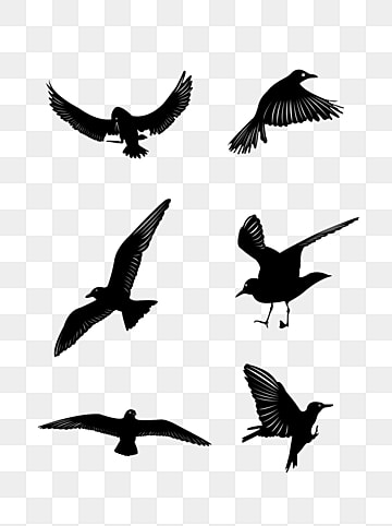 Bird Silhouette PNG Images | Vector and PSD Files | Free