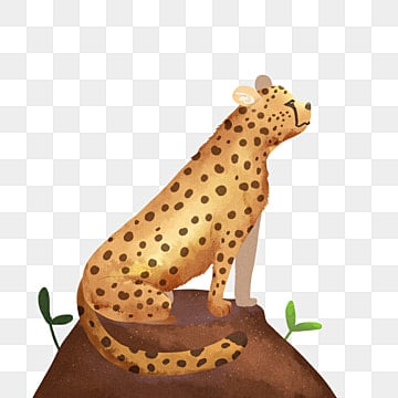 leopard, Leopard, Cat Family, Animal PNG and PSD