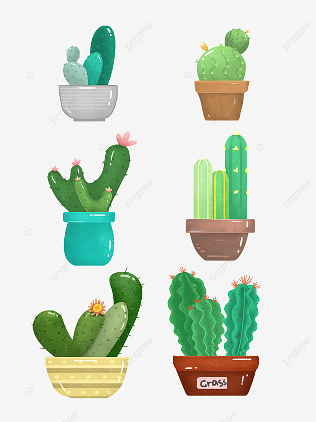 Cartoon Cactus Plant Pots Available For Commercial Use Green