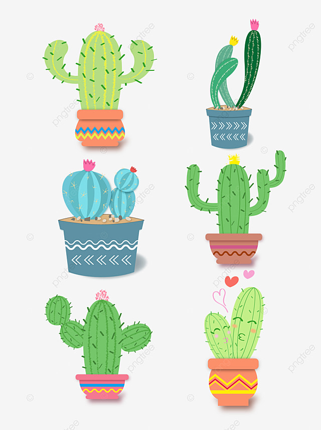 Cartoon Cartoon Cactus Cactus Plant Cartoon Cactus Illustration