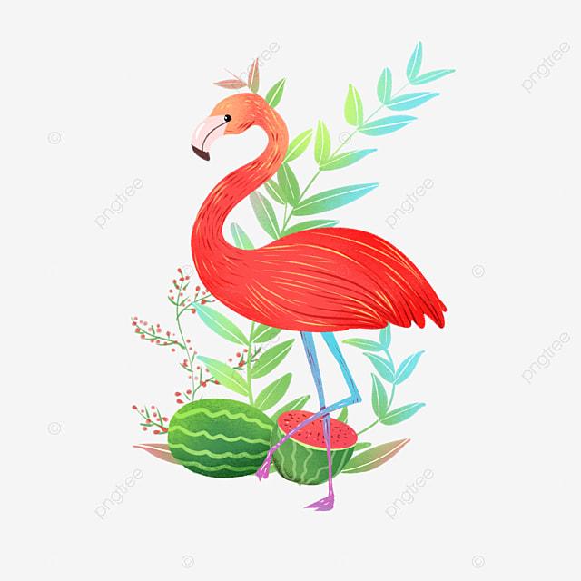 pngtree flamingo plant fruit summer element image 1077465