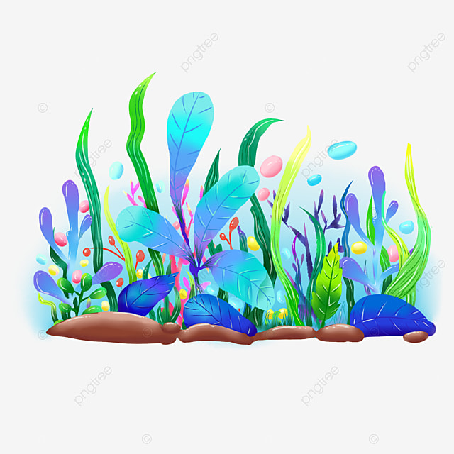 Small Plants In The Underwater World, Submarine Plants, Seaweed