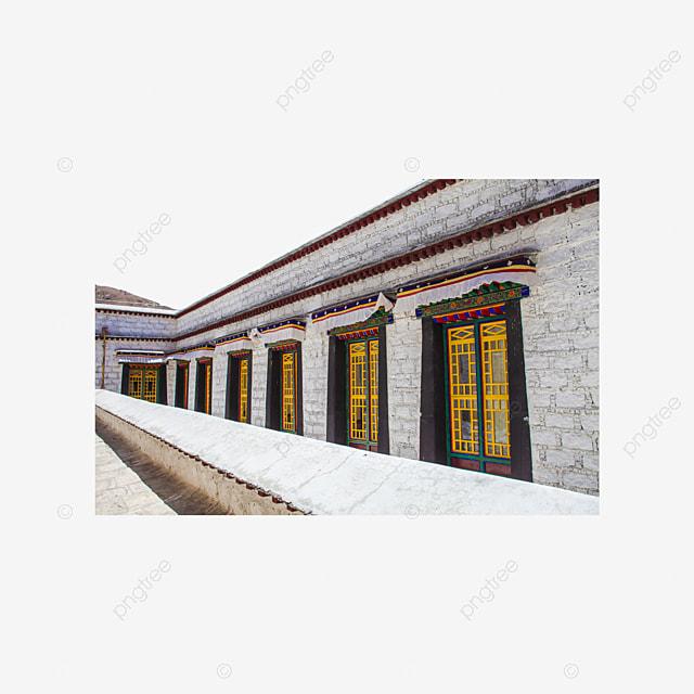 55 Gambar Ayam Tibet HD
