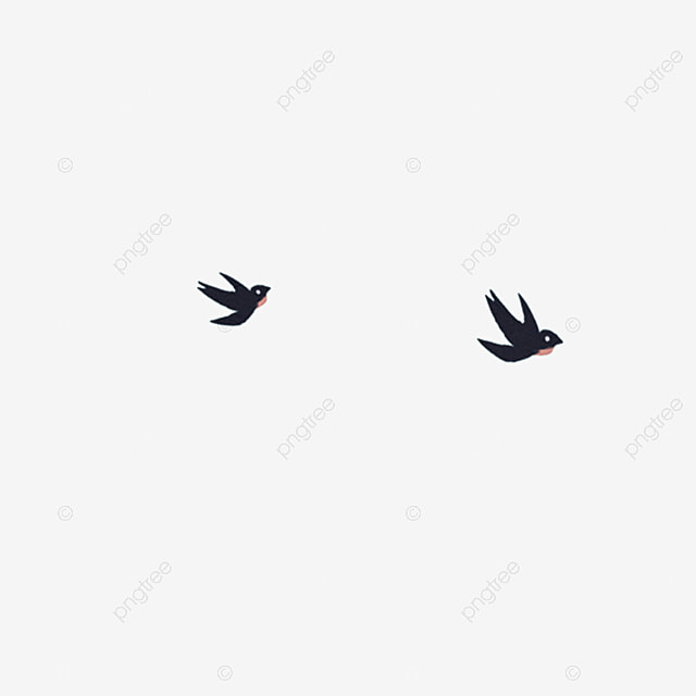 Cartoon Black Little Swallow Free Illustration Birds Small Animals Cute Swallows Png Transparent Clipart Image And Psd File For Free Download