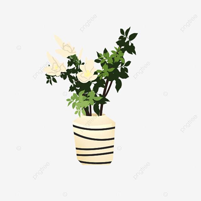 Unduh Pot Bunga Kartun Kartun Bunga Bunga Pot Tanaman Hijau Dalam Ruangan Png Transparan Gambar Clipart Dan File Psd Untuk Unduh Gratis