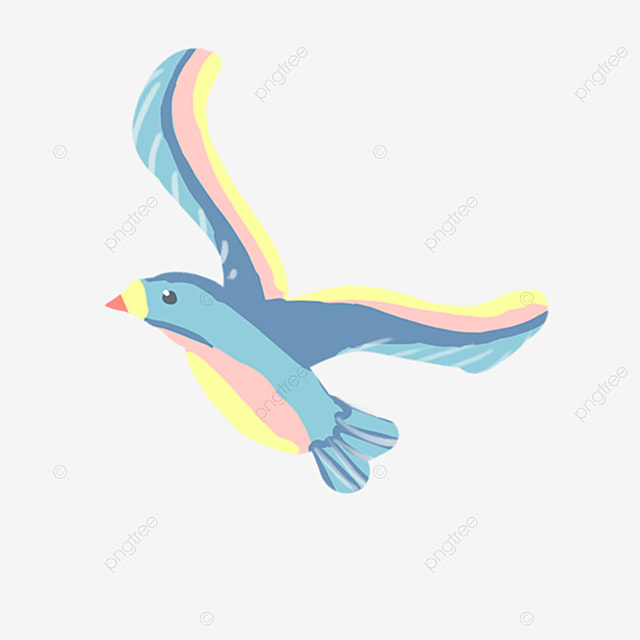 Download 81+ Foto Gambar Burung Camar Kartun  Paling Unik