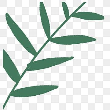 Cartoon Green Leaf Plants png, เวกเตอร์, PSD, และไอคอนสำหรับ