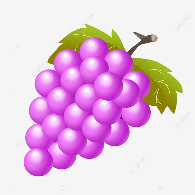 6000 Gambar Anggur Dan Mangga HD