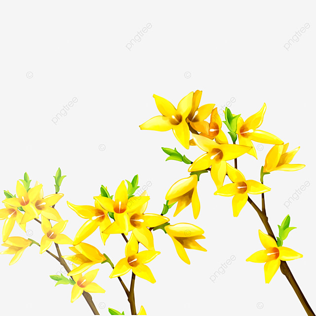 Dekorasi Tanaman Bunga Kuning Bunga Kuning Dekorasi Tanaman Hijau Png Transparan Gambar Clipart Dan File Psd Untuk Unduh Gratis