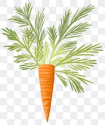 Cartoon Carrot PNG Images | Vector and PSD Files | Free