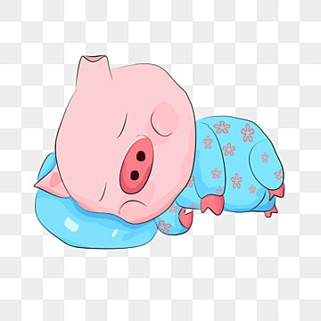 Pig sleeping. Png vector psd and