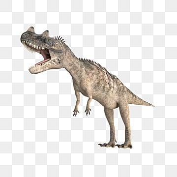 Dinosaur Png Images Vector And Psd Files Free Download On Pngtree Somos el primer parque temático permanente de dinosaurios del ecuador. dinosaur png images vector and psd