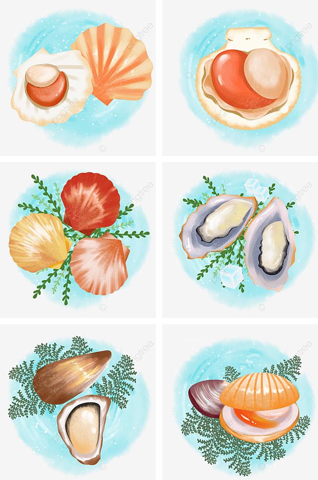 Cartone Animato Disegnato A Mano Frutti Di Mare Cucina Uova