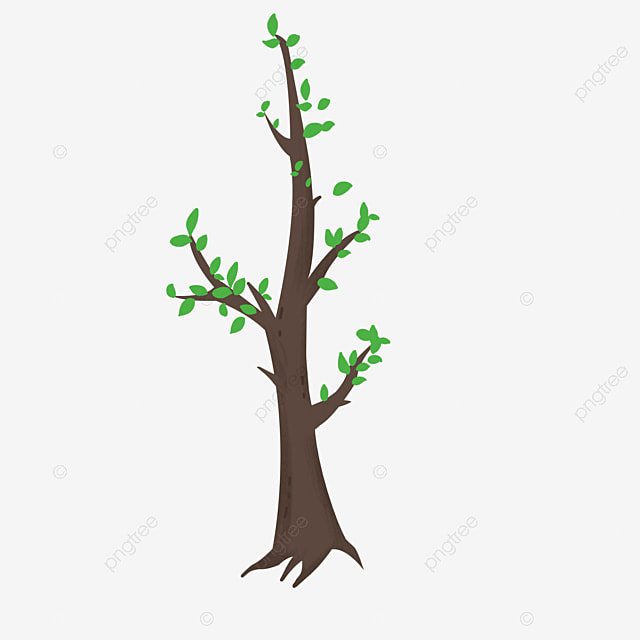 Simple Cartoon Fresh Sprouts Spring Tree Sprouting Simple Tree Cartoon Simple Cartoon Spring Png Transparent Clipart Image And Psd File For Free Download 40 high quality collection of simple tree clipart by clipartmag. simple cartoon fresh sprouts spring