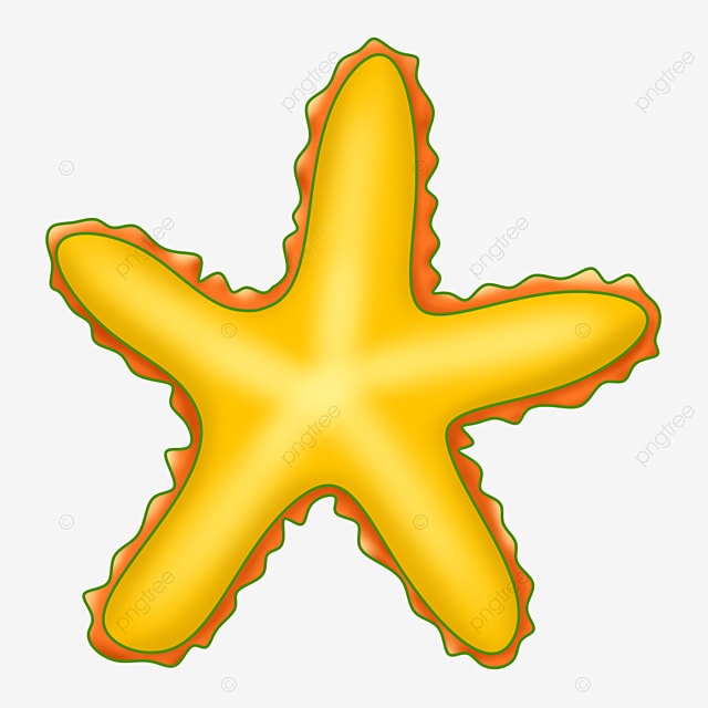 Starfish yellow. Creature aquatic png transparent
