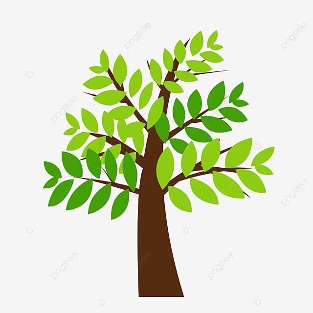 Arbres Verts Feuilles Vertes Jeunes Feuilles Décoration De Plantes ...