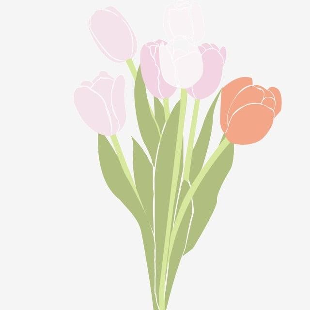 Dessin Animé Main Dessinée Plante Fleurs Fleur Dessin