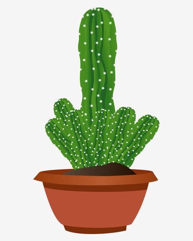 Kaktus Pot Tanaman Kaktus Kartun Dekorasi Kaktus Pot Kaktus Png Dan Vektor Dengan Latar Belakang Transparan Untuk Unduh Gratis